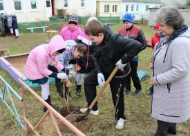 В поселке Семчино отмечают Год Экологии