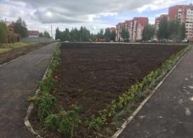 Проект «Вишневый сад»