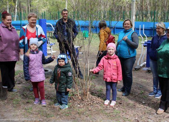 В Рязани продолжается высадка зеленых насаждений с участием актива общественного самоуправления