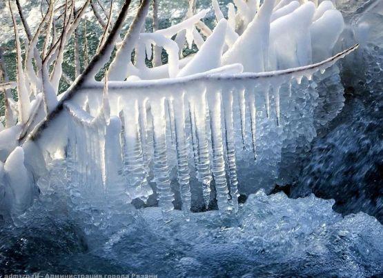 Мокрый снег, ветер, гололедица: погода в Рязани на 27 января